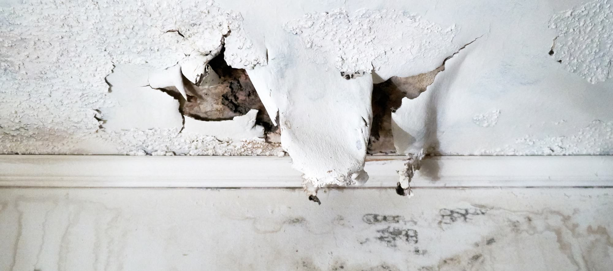 Treating Water Damage